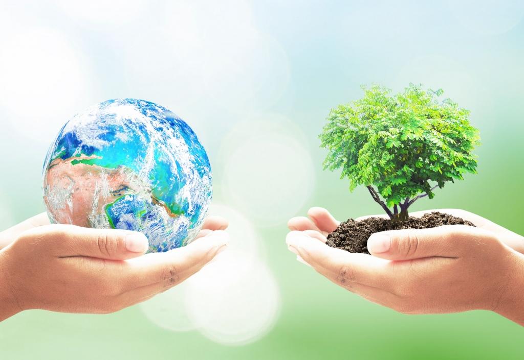 Día Mundial del Ambiente