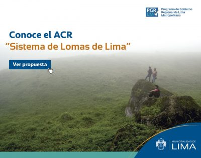 Sistema_de_Lomas_01